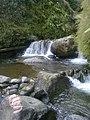 Sungai di lereng Gunung Semeru.jpg