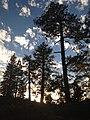Sunset at Donnell Vista (8424148985).jpg