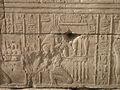 Temple of Edfu (2428051719).jpg