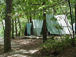 Campsite - Semi-permanent tents on wooden platforms at a scout camp