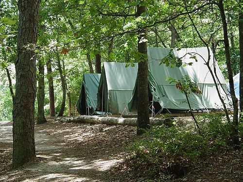 Tent Camping Grounds Qld With Fishing And Dog Friendly