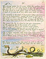 The Book of Thel copy J c1789 Houghton Library object8.jpg