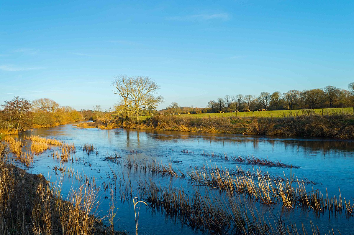 River: River Stour, Dorset