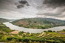 The Douro Valley (10185487635)