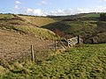 The Footpath to Millington Pastures - geograph.org.uk - 278682.jpg