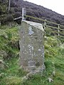 The Grey Stone of Trough - geograph.org.uk - 409725.jpg