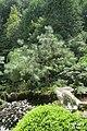 The Japanese garden, Jarków (31763255770).jpg