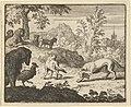 The Lion Allows a Fight Between the Wolf and Renard from Hendrick van Alcmar's Renard The Fox MET DP837685.jpg