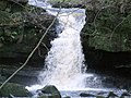 The Lowest Spout - geograph.org.uk - 1593785.jpg