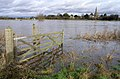 The River Trent - In flood - geograph.org.uk - 662648.jpg
