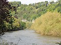 The River Wye near Lydbrook - geograph.org.uk - 1018103.jpg