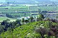 The Village Thana Mountain top view.jpg