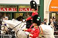 The Welsh Guards (8657844879).jpg