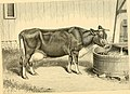 The breeds of live stock, and the principles of heredity (1887) (14594783108).jpg