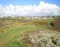 The hillfort or settlement on The Gribin - geograph.org.uk - 1253845.jpg