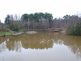 The pond, Savernake Park, Bracknell - geograph.org.uk - 125702.jpg