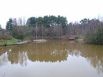 Forest Park, Bracknell Forest - Image: The pond, Savernake Park, Bracknell geograph.org.uk 125702