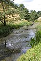 The river Dove in Wolfscote Dale - geograph.org.uk - 309624.jpg
