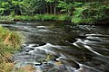Tobyhanna Creek (5) (20745738313).jpg