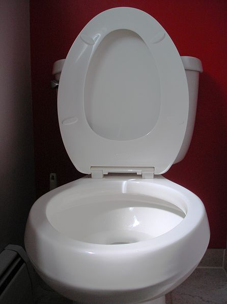 File:Toilet seat up.JPG