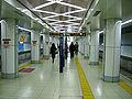 TokyoMetro-kiyosumi-shirakawa-platform.jpg