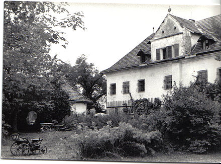 Tonhof in Maria Saal, the birthplace of Welwitsch