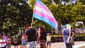 Trans Solidarity Rally and March 55422 (17793198042).jpg