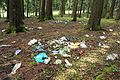 Trash in forest.jpg
