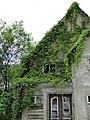 Tribsees Karl-Marx-Str 27 Ruine 2014-05-25 8.JPG