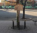 Tsugaru-no-taiko 2009-11.jpg