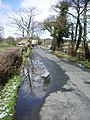 Twitter Lane, Waddington - geograph.org.uk - 742387.jpg