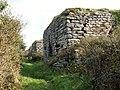 Two of the Craiglas Lime Kilns - geograph.org.uk - 1553916.jpg