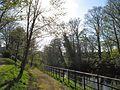 UCC, Cork, 12.4.14 - panoramio (4).jpg