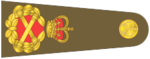 Shoulder insignia consisting of crossed golden batons surrounded by golden oak leaf embellishment, topped with a crown.