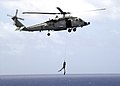 US Navy 030513-N-0295M-014 Seahawk demonstrates the lowering of a Search and Rescue (SAR) swimmer.jpg