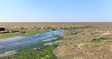 Uniek door eb en vloed steeds wisselend kweldergebied. Locatie, Noarderleech Provincie Friesland 002.jpg