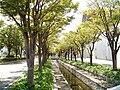 Univ-of-Hyogo-Akashi11.jpg