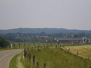 Utrechtse Heuvelrug - Utrecht Hill Ridge