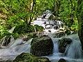 Val de Consolation, bas de la cascade du Tabourot.jpg