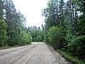 Valdaysky District, Novgorod Oblast, Russia - panoramio (452).jpg