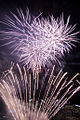 Valentines Day Fireworks 2011 (5444818027).jpg