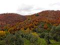 Valle del Genal 07.jpg