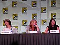 Vampire Diaries Panel at the 2011 Comic-Con International (5985267861).jpg