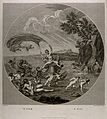 Venus riding a scallop shell chariot over the seas accompani Wellcome V0017044.jpg