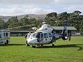 VicPol-Ambulance SA365 N2 - Flickr - Highway Patrol Images.jpg