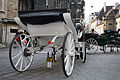Vienna - Chariots by the St. Stephen's Cathedral - 4608.jpg