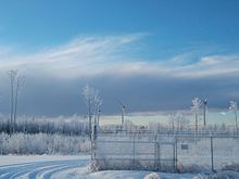Five wind turbines in snowy forest
