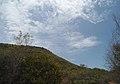 View at Kambalakonda wildlife Sanctuary.JPG