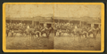 View of tourists in a ox-drawn cart, Jacksonville, Fla, from Robert N. Dennis collection of stereoscopic views.png
