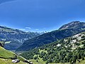 View on the Diablerets from Dorbon.jpg